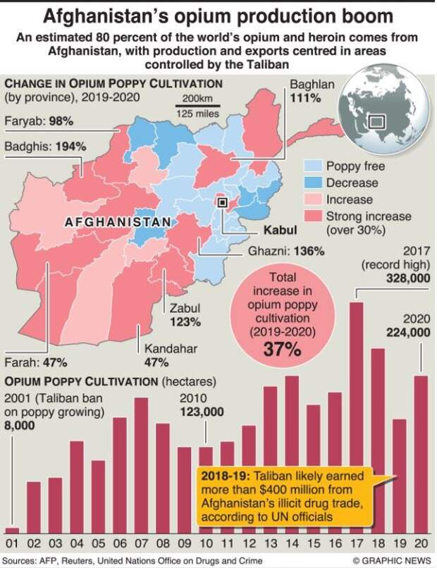 О борьбе Талибана с наркотиками