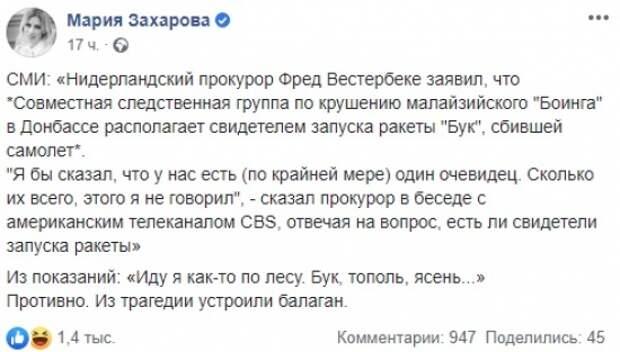 Россия высмеяла Нидерланды из-за внезапно найденного «свидетеля» крушения МН17 в Донбассе