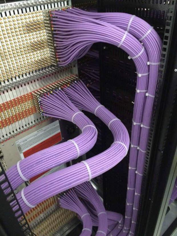 Когда в проводах полный порядок. | Фото: Пикабу.