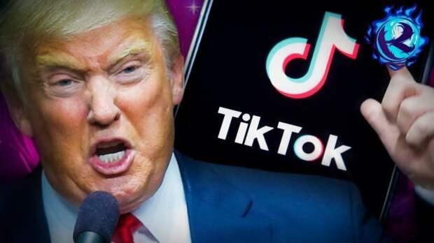 Эксперт: Обвинения США в адрес TikTok напоминают «охоту на ведьм»