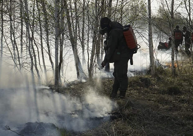 Военнослужащие ЦВО локализовали очаги возгорания на общей площади более 600 гектаров в Тюменской области