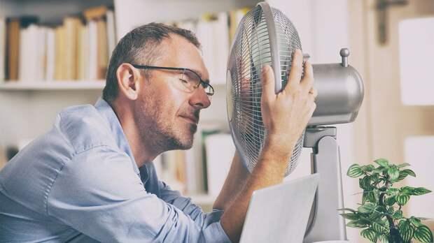 Как помочь организму в жару и что делать при палящем солнце