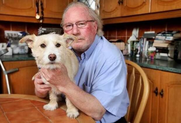 Мужчина приютил бездомного пса и не пожалел