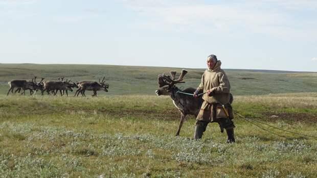 Госдума РФ подписала закон о бесплатном наделении землей жителей Ямала