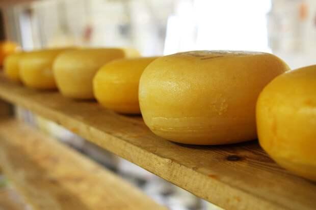 Основатель сыроварни: «Турист готов не только покупать сыр в Крыму, но и увозить его с собой»