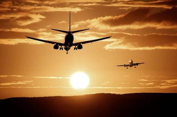 Вылетевший из Шереметьево самолет столкнулся с птицей при наборе высоты