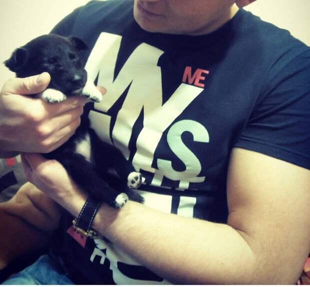 щенок и мужчина