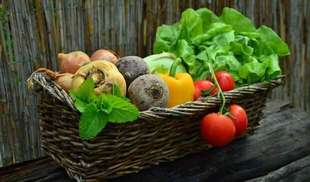 На Ставрополье рассказали, какие продукты подскочили в цене с начала года