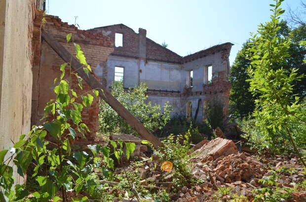 Остатки господского дома внутри. Кирпичи растаскиваются местными жителями на бытовые нужды