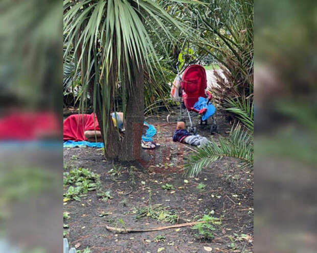 В Сочи рядом со спящей на земле парочкой ползал младенец