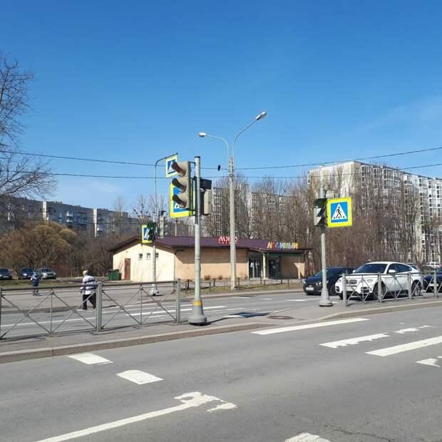 Светофор на Гатчинском шоссе, где погибла собака и сбили девочку, вернули в строй
