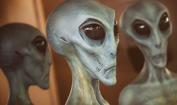 О чем говорится в рассекреченом документе ФБР с описанием инопланетян