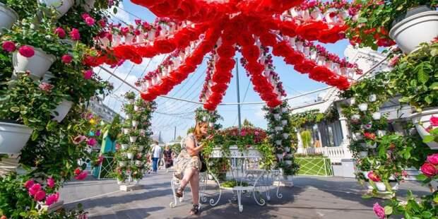Собянин: Фестиваль «Цветочный джем» пройдет с 1 сентября по 1 октября. Фото: Ю. Иванко mos.ru