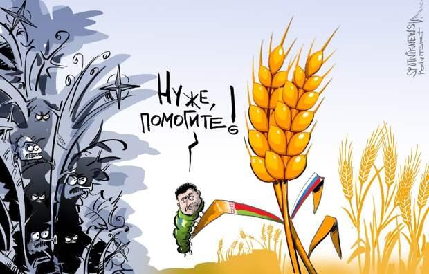 Зеленский приступил к экономическому уничтожению Белоруссии