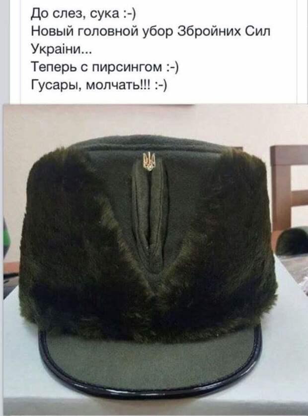 Y4mPdorZynw