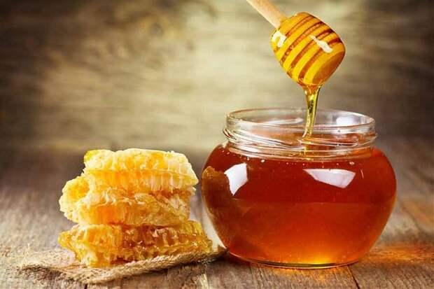 Врач опроверг популярный миф о пользе мёда