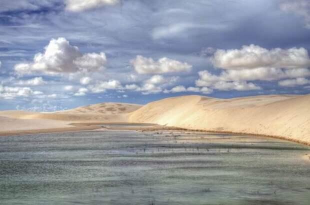 Чудо в пустыне (22 фото)