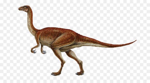 Палеонтолог Антонио Баллелл: бристольский динозавр был плотоядным и ходил на двух ногах