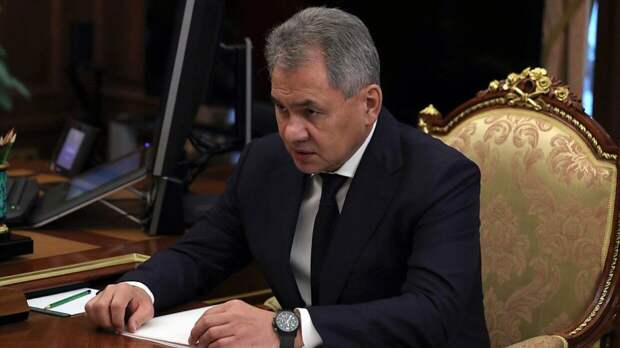 Картины и работы из дерева авторства Шойгу продали за 40 миллионов рублей