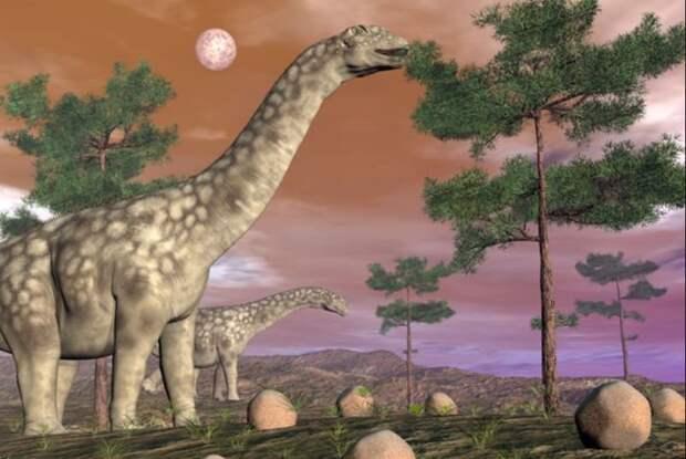 В Аргентине нашли останки самого большого сухопутного динозавра