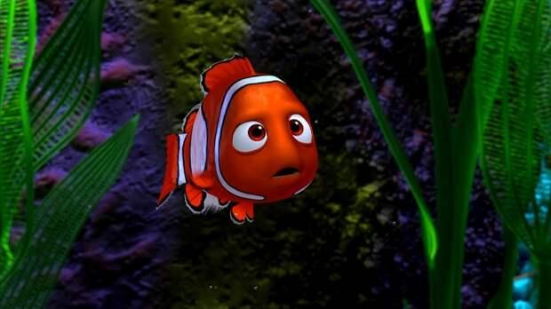 Сможете без ошибок пройти тест о рыбках из мультфильмов и сказок?