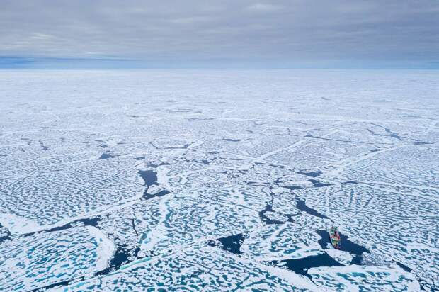«Прекратите, мы проиграли»: американцы об Арктике