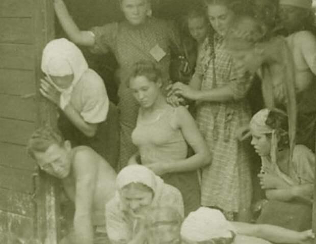 В таких вагончиках перевозились женщины для рядовых солдат.