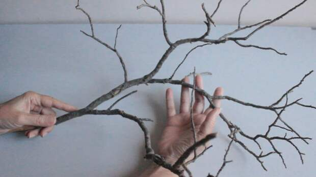 Интересный декор из сухих веток, который преобразит ваш интерьер