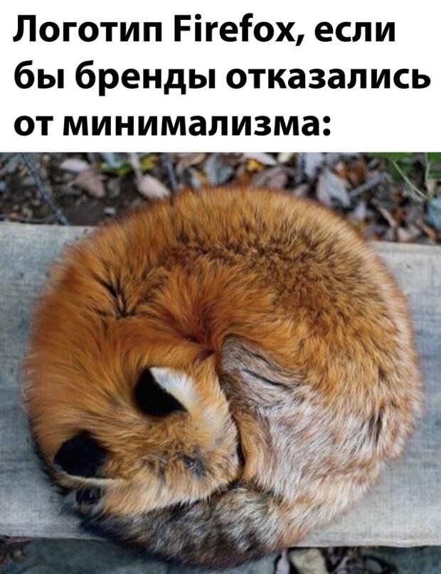 Подборка картинок. Вечерний выпуск (30 фото) - 01.03.2021