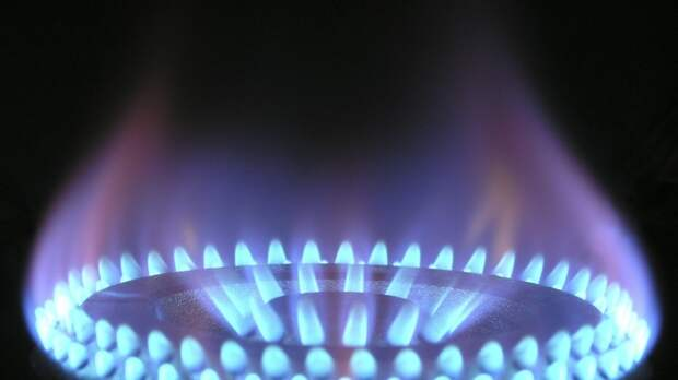 Специалист Рыков поделился мнением о сроках выполнения бесплатной газификации