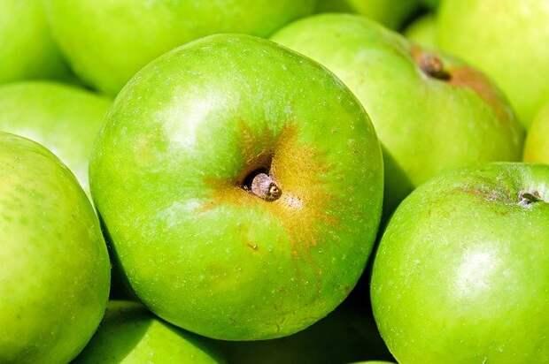 Диетолог рассказала, кому нельзя употреблять зеленые яблоки