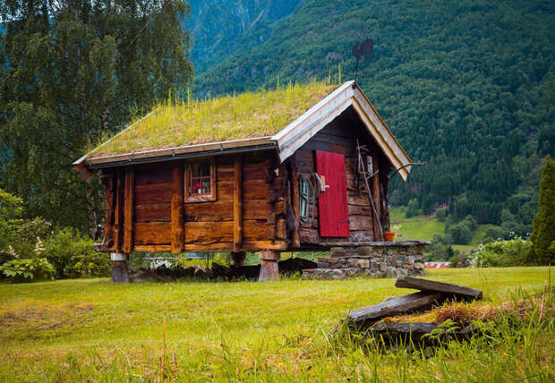 Скандинавские домики с заросшей крышей, в которых хочется поселиться немедленно