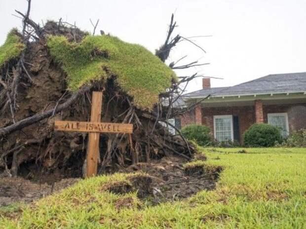"""В США количество жертв урагана """"Лаура"""" возросло до 16"""