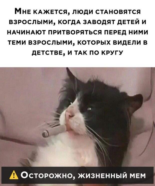 Жизненный мем