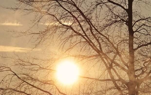 Еще не вечер: температура в Москве уже к полудню обновила давний рекорд