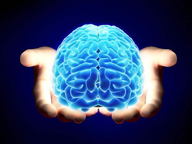 Практическое упражнение. На увеличение подсознательной жизни в мозговых клетках.