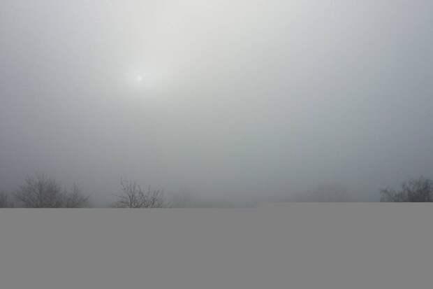 МЧС предупредило о сильном тумане в Подмосковье до утра 31 июля