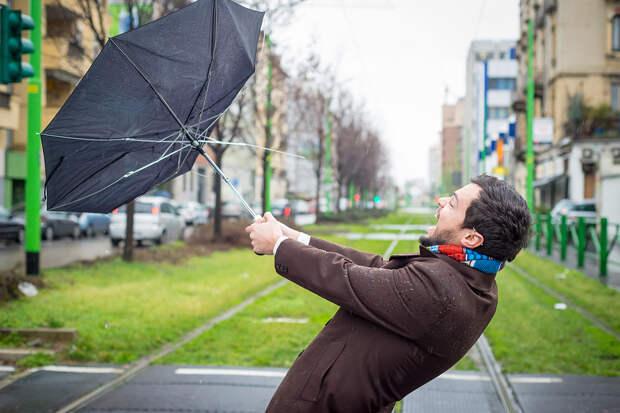 Синоптик предупредил о сильных ветрах в Центральной России