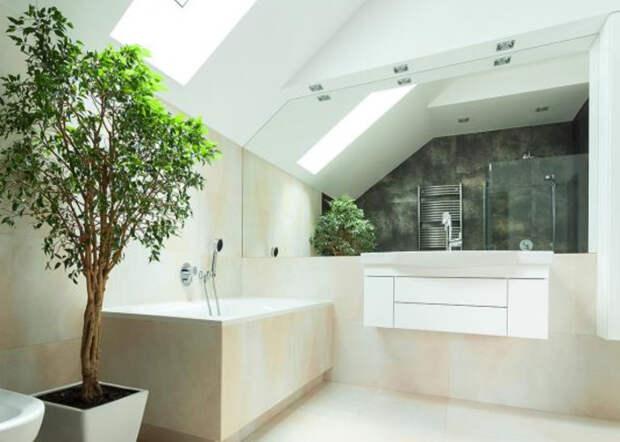 Ванная комната, объединенная с санузлом: модные решения на площади 9 кв. м (75 фото)