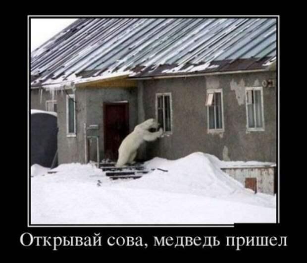 1454521001_1454517988_demotivatory_25