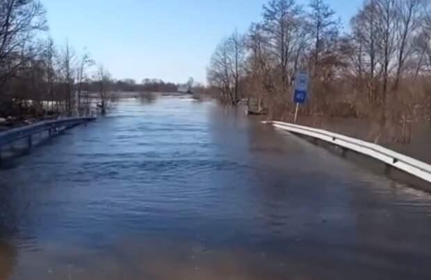 Три рязанских деревни оказались окружены водой из-за паводка
