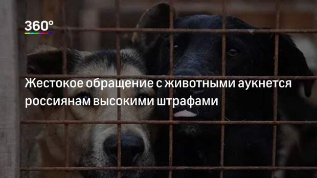 Жестокое обращение с животными аукнется россиянам высокими штрафами