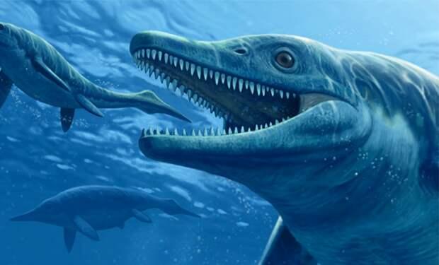 Ученые нашли следы животного невероятных размеров