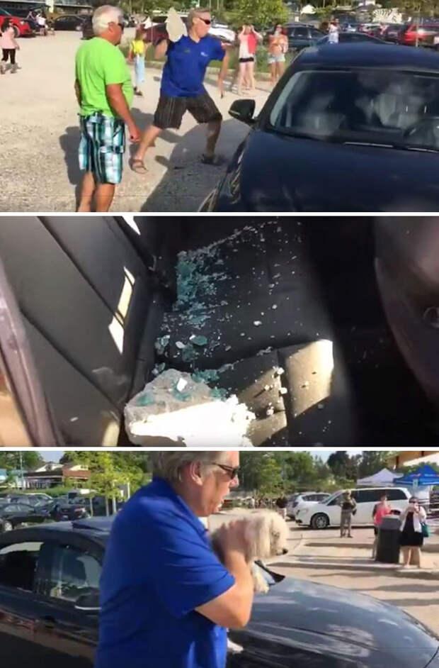 Мужчина бросает камень в окно BMW, чтобы спасти собаку, запертую в машине на жаре Счастливый конец, животные, спасение