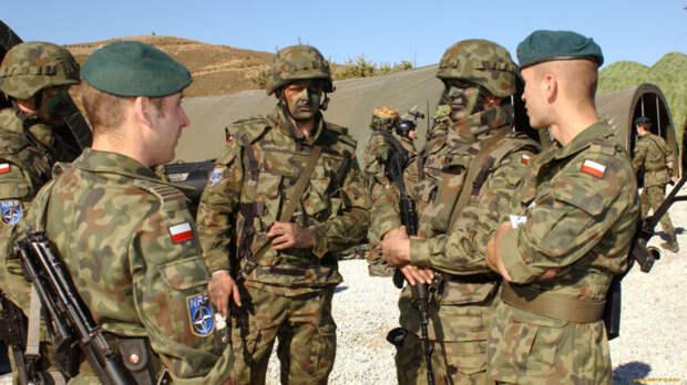 WarGonzo: на Донбасс прибыли военные из страны НАТО