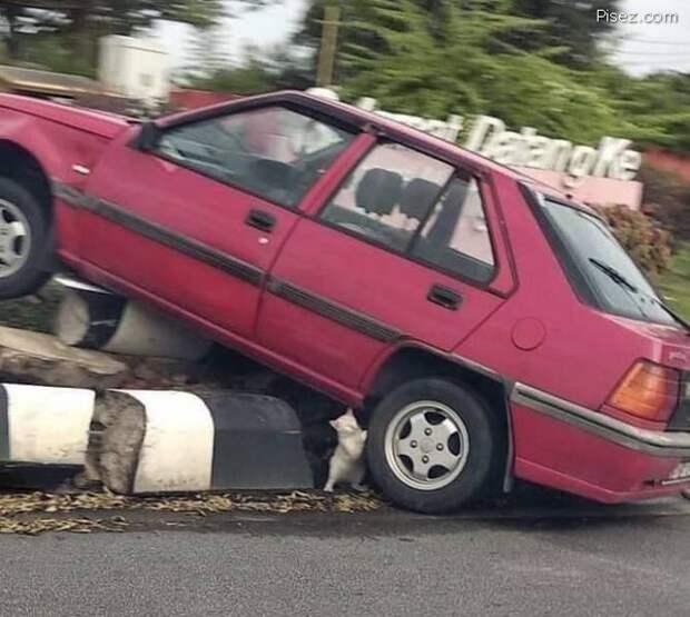 Автомобильные приколюхи дня