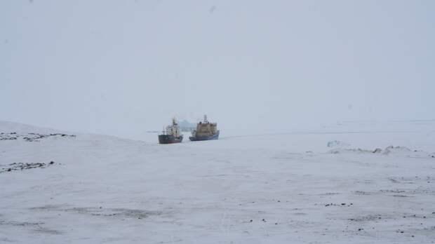 Американский журналист рассказал об интересе Вашингтона к Арктике