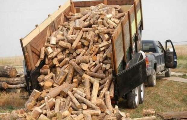Как выбрать лучшие дрова