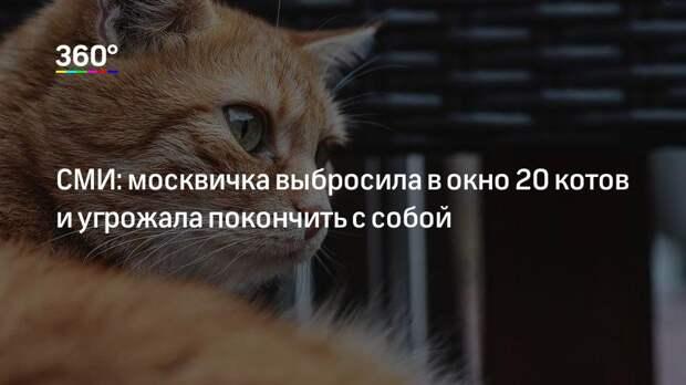 СМИ: москвичка выбросила в окно 20 котов и угрожала покончить с собой