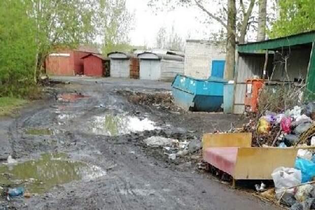 В Мичуринске жители жалуются на несанкционированные свалки